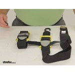 BoatBuckle Tie Down Straps - Trailer - IMF17633 Review