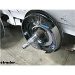 Dexter Electric Brake Assembly Review