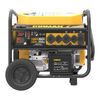 Generators 333-P08003 - 122 Volt Output,240 Volt Output - Firman