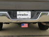 0  hitch covers bright flags and political standard in use