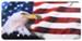 Cruiser U.S.A. License Plates