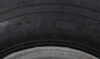 AM30010 - Bias Ply Tire Kenda Tire with Wheel