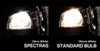 Vehicle Lights CM93416 - Halogen Light - EVO Formance