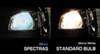 EVO Formance Vehicle Lights - CM93423