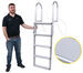 Lift Dock Ladder