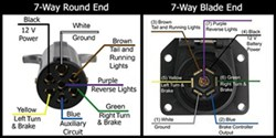 Pin Designations of the 7-way Round and the 7-way Flat on the Pollak 7-way  Flat to Round Adapter | etrailer.cometrailer.com
