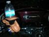 To-Go Beverage Holder Clip for Bikes - Swagman To-Go customer photo