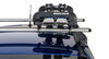 0  ski and snowboard racks rhino rack roof rhino-rack fishing rod carrier - locking 2 pairs of skis or 4 rods