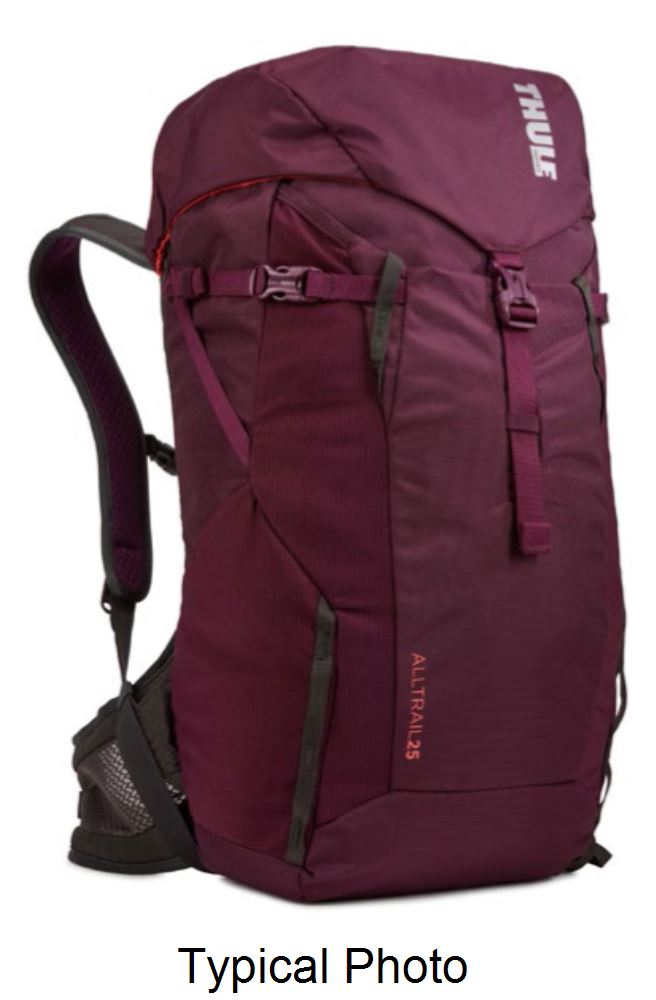 Thule Backpacks - TH3203738